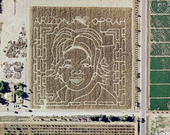 arizona-loves-oprah-so-much-that-she-inhabits-its-cornfields