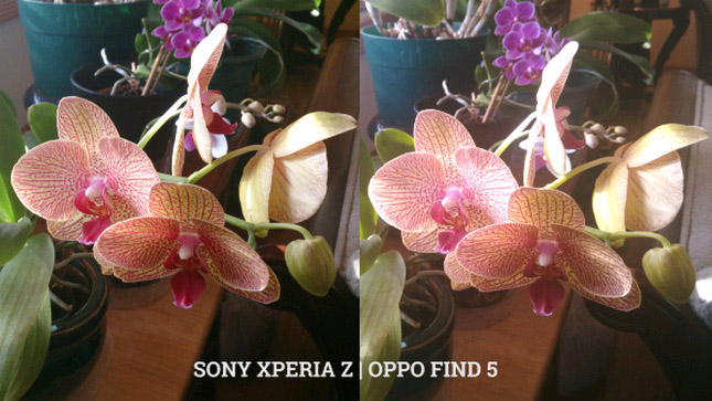 oppo find5- sony xperiaz5