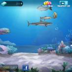 Fish Island 17
