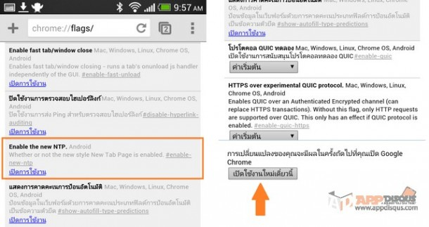 Google Chrome appdisqus 000