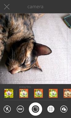 OneLens_Screen_07