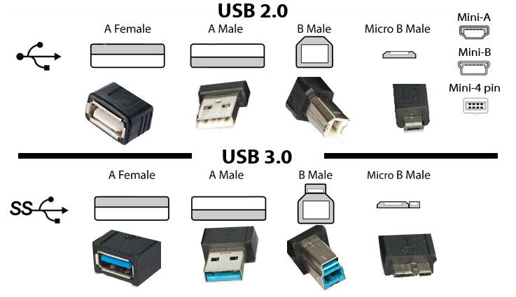 Usb type c vs usb 3