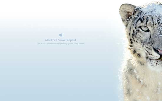 snow_leopard_wallpaper_7